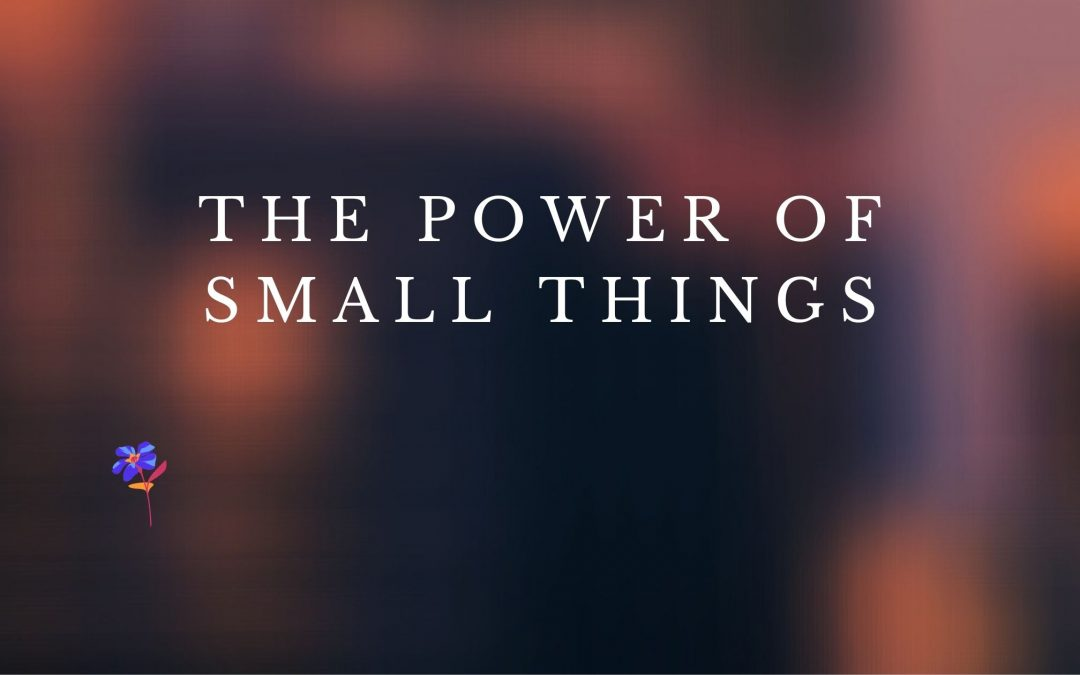 The Power of Small Things